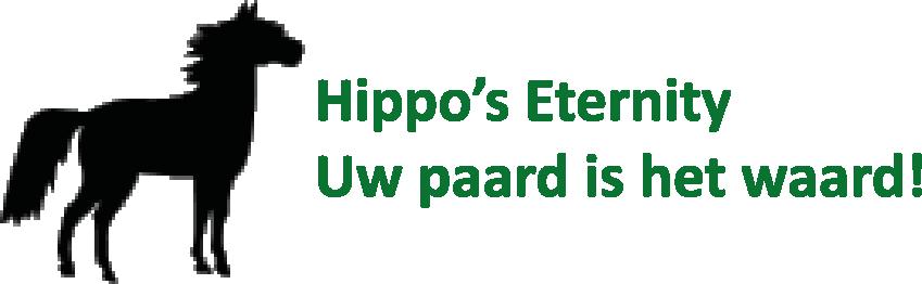 hippo's eternity